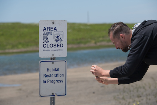 Andy Uhler, Marketplace, gains deeper understanding of salt marsh restoration